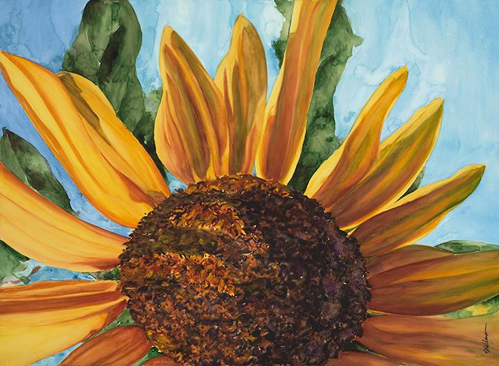 Sunflower for Mom